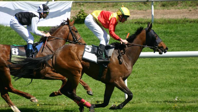 10.000 يورو جائزة مسابقة الخيول في جولدن ريفيرا Golden Riviera